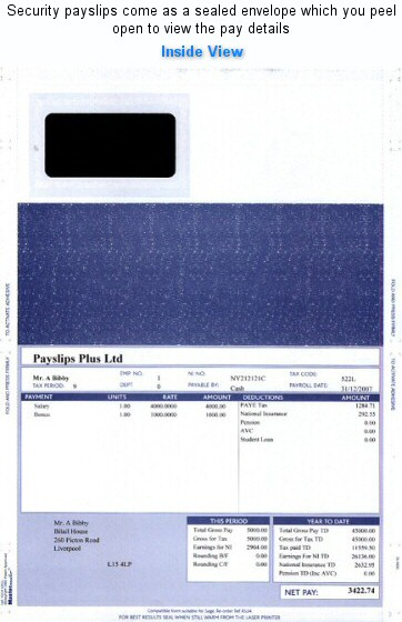 Premium RS34 Payslips